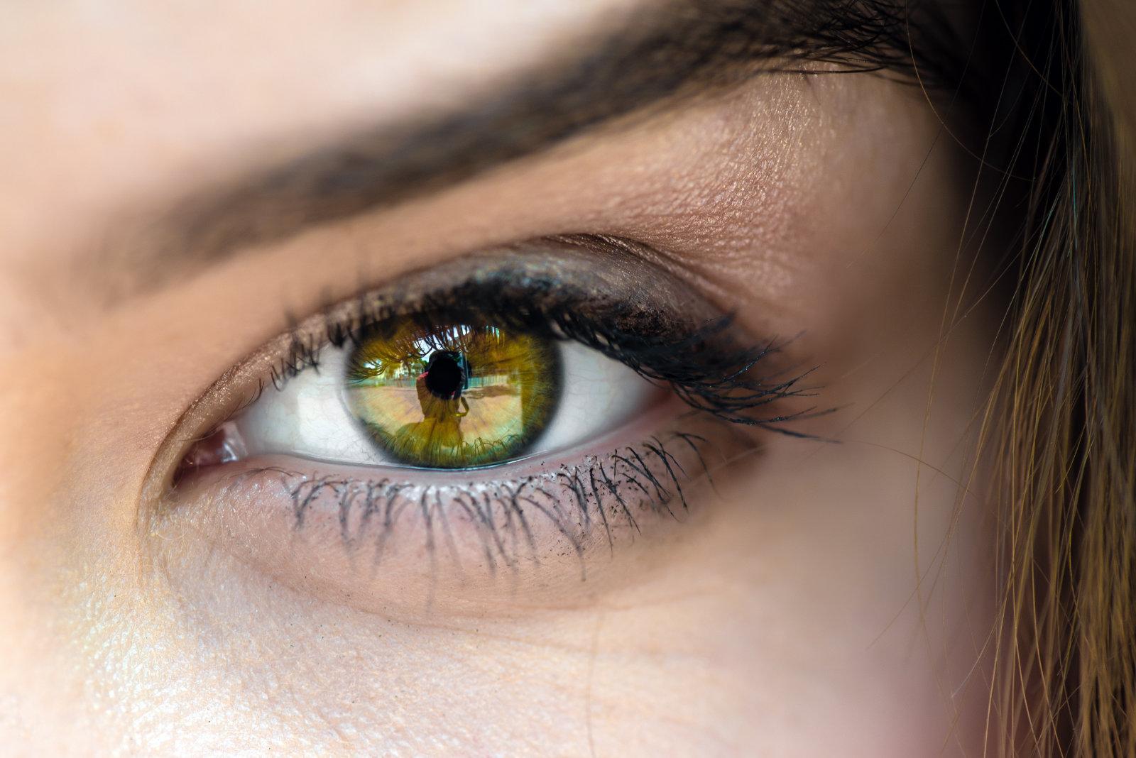 SEOIC: un espacio de encuentro para profesionales con interés en la Inflamación Ocular